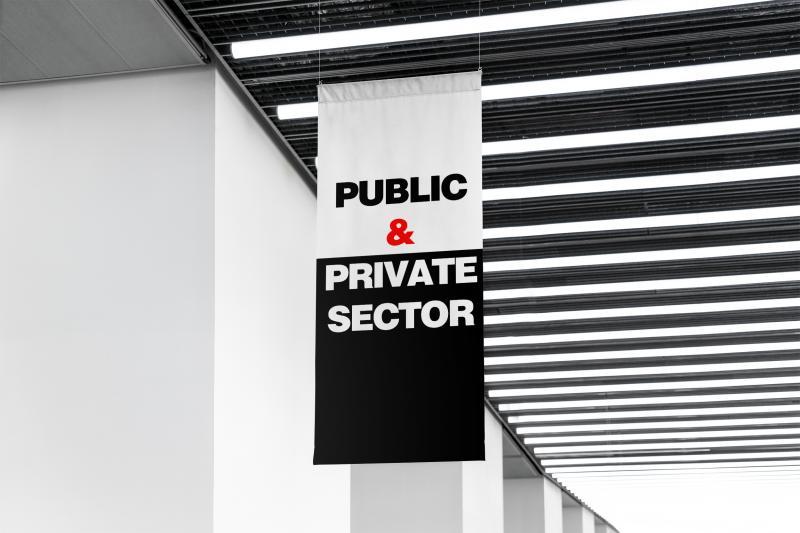 Settore pubblico e settore privato